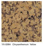 Chrvsanthemum Yellow granite