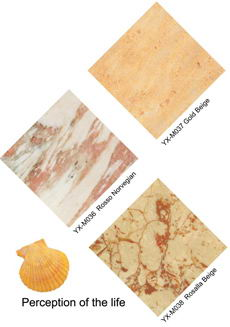 rosso norvegian marble & gold beige marble